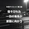 【 体験実話 】失恋ダイエット 第三話 | 東京、両国橋。寝そびれた一羽の海鳥が家路に向かう。