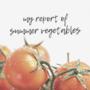 【夏野菜料理の記録】ナス/ピーマン/ゴーヤ/トマト※自分用メモを兼ねて