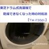 東芝ドラム式洗濯機で乾燥できなくなった時の対処法[TW-Z380L]