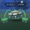 ポケモンGO! 京都 円山公園でGO! 野生のナットレイ!
