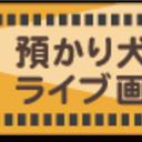 livecameraのブログ