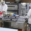 ブルーベリージュレ製造が続く ブルーベリーコーラス隊