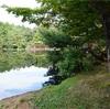 水辺でキャンプ 兵庫県 春日の日が奥渓谷