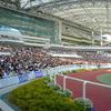 東京芝1400m(2歳戦)種牡馬別ランキング