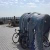 20170318_大崩開通(Bike:140km&Run:4km)