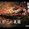【紅葉】東京・六義園 池?霧の川も?手軽に味わう季節感