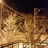 雪降る夜に……