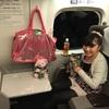 新幹線でしまかぜ弁当〜☆*:.。. o(≧▽≦)o .。.:*☆