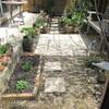 花の散る庭と、新しい苗いろいろ