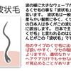 """【AZプレゼンツ以外と知らない美容の小話vol.3】""""くせ毛について"""""""