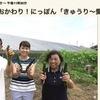 蛇腹キュウリに挑戦する岡崎朋美さん.西条市では,石鎚山からの水を惜しむことなくたっぷり与えられたキュウリを炒めてつけた「きゅうりのしょうゆ漬け」.更には「きゅうりフライ」「きゅうりの肉詰め」「きゅうりの煮びたし」までいただきました. NHK「食材探検,おかわり日本」