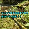 テンカラ竿じゃ短い?簡単仕掛けで渓流エサ釣りしてみた結果。【ジェットセッター櫟】