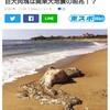 千葉県の東沖は地震注意エリアか?