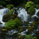 京極町 協力隊 blog