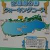 浜ちゃん日記 佐鳴湖の散策とカワセミなどの観察