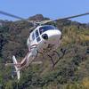 静岡ヘリポート祭りに行ってきた