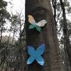 里山ガーデンの蝶