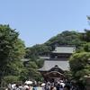 #朝鎌 仲山進也さんのイベントからの鎌倉プチ旅→看板を掲げる話