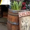 ローマ観光 最終日、やっぱりこのレストランが一番美味しい!