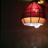 No.172  とお(10)の木の灯り~紅葉