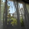 まどろみの午後、窓から風がね・・・