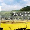 澄んだ空気と水 第44号 2016.05.17 (火) 発行