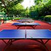 卓球女子 カタールオープン2017 トーナメント、組み合わせ表(シングルス/ダブルス)