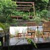 北側の庭がほぼ完成!
