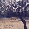 詩集#6 感情消失の記念碑