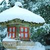 雪の日きのこ 箱根神社の灯篭
