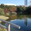 続・江戸の風情と紅葉色づく「小石川後楽園」
