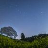 【天体撮影記 第85夜】 佐賀県 菜の花の海に浮かぶ馬場の山桜と春の星空を