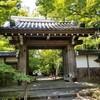 【京都】長岡京市、『光明寺』に行ってきました。 京都旅行 女子旅 青もみじ