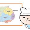 転移性脳腫瘍(自分の病気)について