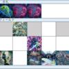 【遊戯王】DDD展開考察 #336(必要札:スワラル、ネクロ、ネクロ)