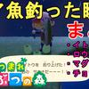 【あつ森】超朗報!3月に釣れるレア魚をコンプしました!レア魚の効率の良い釣り方について解説!How to fish rare fishes!Animal Crossing New Horizons【あつまれ どうぶつの森/ニンテンドースイッチ】