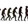 歩行における力学的効率性と生理的効率性を分けて評価していますか?