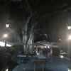 【THE BEACH BAR】モアナ・サーフライダーのレストランに行ってみました!【ハワイ レストラン】