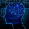 オセロが脳トレになる4つの理由|オセロで交友関係も広がる