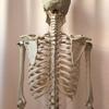肩の痛みの原因は姿勢!?