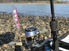 週末の釣り!