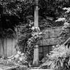 古い電柱(荒木町)