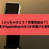 大学生がAppleWatchを2か月つけた使用感を報告!ぶっちゃけどう?充電性能は?