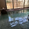 小砂温泉 ホテル美玉の湯(栃木)