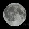 いざよい満月(月齢15.726)
