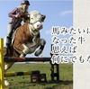 馬にみたいになった牛。信じれば何にでもなれる。