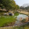 矢橋帰帆島 せせらぎの池(滋賀県草津)