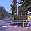 横断歩道で一時停止しないと違反です!