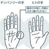 親指を動かすと認知症予防になる
