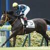 タコイチの《今週の狙い馬》2頭目!